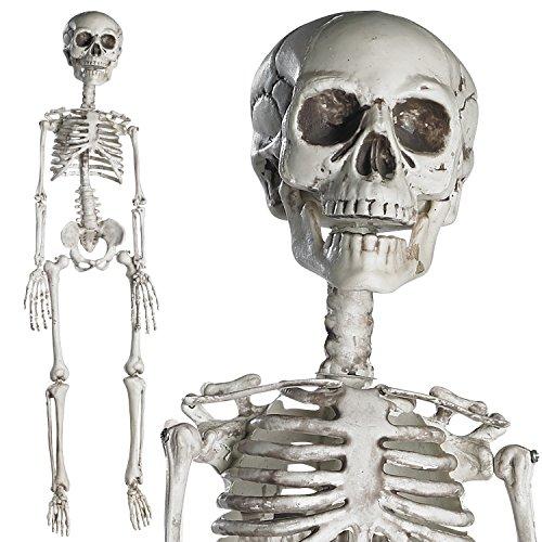 "Prextex 30"" Halloween Skeleton- Full Body Halloween..."