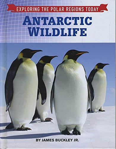 Antarctic Wildlife (Exploring the Polar Regions Today) -  Buckley Jr, James, Hardcover