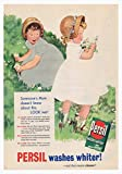 Persil Flowers Poster Bild Vintage Old Advert Artwork