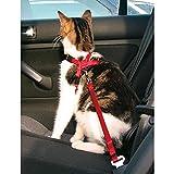 TRIXIE Arnés y Cinturón seguridad Gatos, 20-50 cm, Rojo, Gato