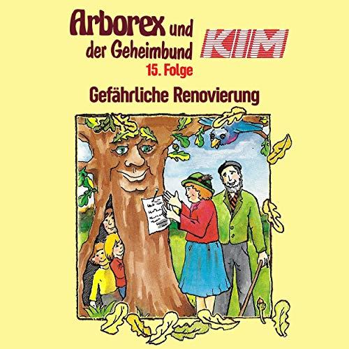 Gefährliche Renovierung audiobook cover art