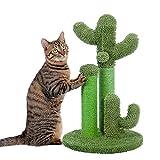 PAWZ Road Cactus Colonne Tiragraffi per Gatti, Tiragraffi a Forma di Cactus con Palla appesa e Base Robusta per Gatti, Fondo Verde 53cm (Taglia M)