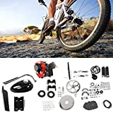 Kit de Motor de Motor de Gas Estable, Motor de Gasolina de Gasolina Material Superior Material de Gasolina Gas de Gas Bicicleta Kit de Acero y plástico para la Bicicleta motorizada Modificación de
