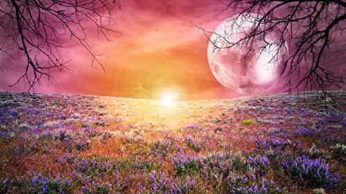 Diamond Painting Field Flower Sunset Tree Moon Home Decor Gift 40X50Cm Round