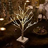 Hairui Lighted Little Birch Tree with Timer 24LED 18IN Battery Operated Pre-lit Twig Tree Gift for Christmas Easter Decoration Tabletop Centerpiece