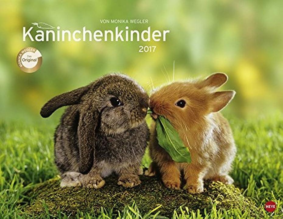 翻訳者遷移薬Kaninchenkinder Posterkalender 2017