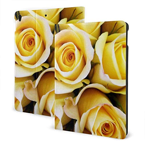 Cool Vintage Airplane Funda para iPad Air 3rd Gen 10.5 '2019 / iPad Pro 10.5' 2017 Soporte en Folio de múltiples ángulos Auto Sleep / Wake para iPad 10.5 Inch Tablet-Yellow Rose-One Size
