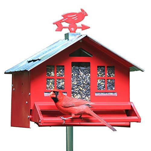 Perky-Pet Mangeoire oiseaux Squirrel-be-Gone anti-écureuil - Cabane métal avec toit pour graines multiples - fixation ou suspension - Grande capacité : 3,6 kg de graines #338