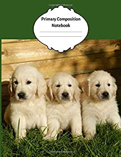 Primary Composition Notebook: Adorable cute Golden Labrador Puppies. Draw and Write Journal with Picture Space for Drawing and Primary Rules Lines for Creative Writing