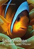 Stille Welten: Faszination unter Wasser - Jo Achim Werner