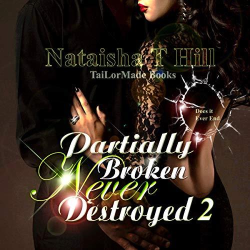 Partially Broken Never Destroyed II: Mirror Mirror (Revised) audiobook cover art