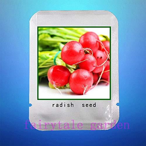 Bloom Green Co. Graines de radis, 100pcs / sac de graines de radis rouge, graines de légumes de fruits bio, graines Heirloom pack professionnel, plantes pour le jardin à la maison