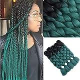 YMHPRIDE Ombre Kanekalon capelli intrecciati 60 cm 5Pz 100g 2 Toni capelli treccia sintetica, nero e verde scuro