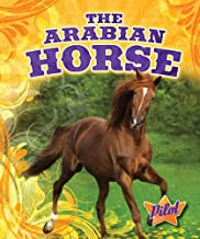 The Arabian Horse (Pilot Books: Horse Breed Roundup)