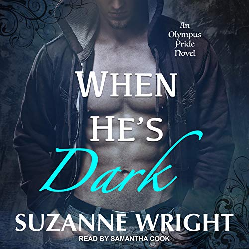 When He's Dark audiobook cover art