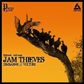 Zimbabwe / Vulture