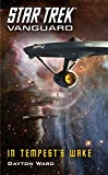 Vanguard: In Tempest's Wake (Star Trek: Vanguard Book 9) (English Edition)