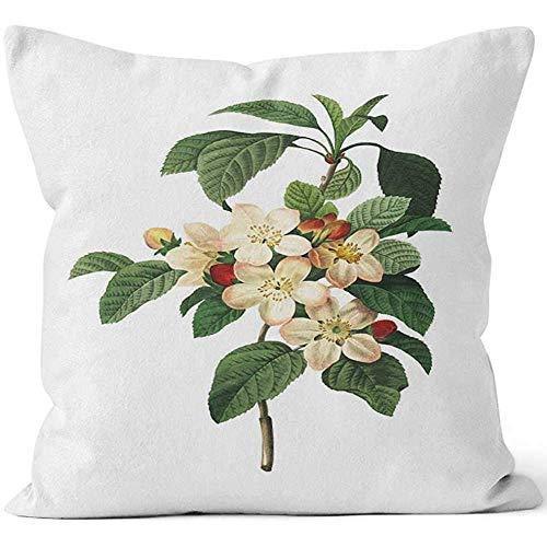 chipo Throw Pillow Covers Apple Blossom Redoute Botanical S Square Store Cremallera para El Hogar Funda De Almohada Decorativo Hogar Albergue Sofá Throw Pillow Funda Libro Impresión Vac