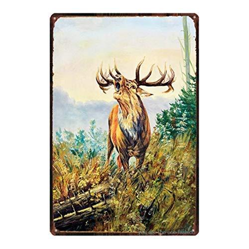 Cartel de estaño para decoración de pared, diseño de flores de animales y pájaros de jardín pastoral, para decoración de pared, diseño retro, placa de hierro, 20,3 x 30,5 cm