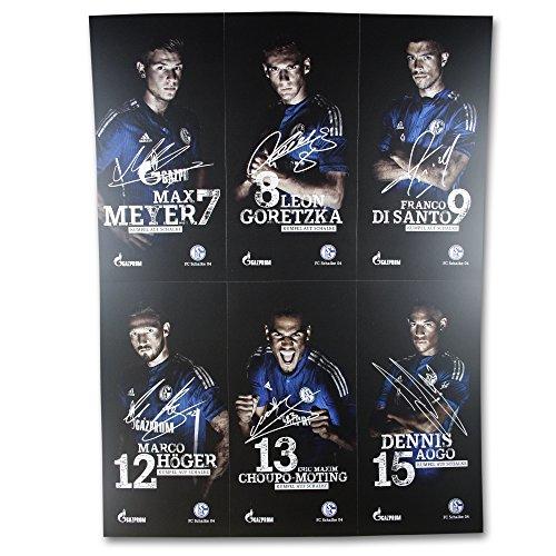 Schalke 04 Autogrammkarten/Sammelkarten/Autographs 30 Stück, Spieler, Trainer und Maskotschen S04