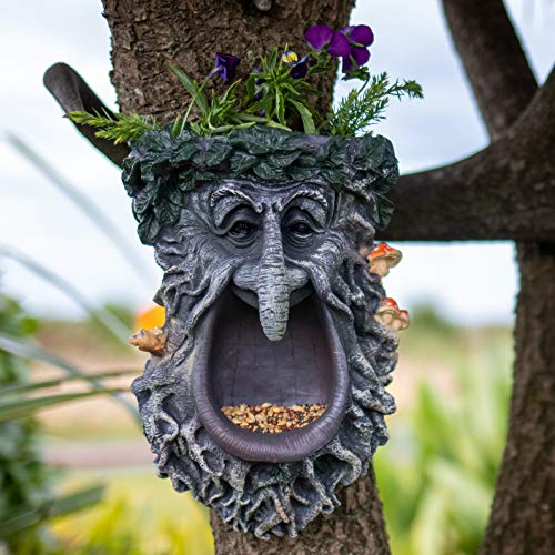 Tree Face Bird Feeder | Fun Outdoor Garden Decor | Unique Design Old Man Tree Hugger Planter | Hand Painted Whimsical Yard Art | Greenman Plaque for Fairy Garden | 10 x 7 inches