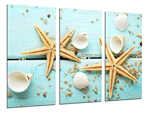 Cuadro Fotográfico Tema Marino Vintage, Estrellas de Mar Tamaño total: 97 x 62 cm XXL