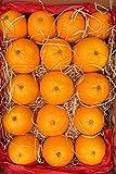 Naranjas para zumo de Valencia   Naturales y frescas- 4 Kg aprox
