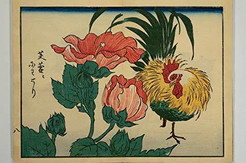 // TPCK // Hiroshige II – Álbum de fotos de Hiroshige 07 – Gallo con flores rojas – Clásico Cuadro Cuadro Cuadro Cuadro Arte Arte Arte de pared Decoración Japón Gallo – Tamaño A4 (21 x 29,7 cm)