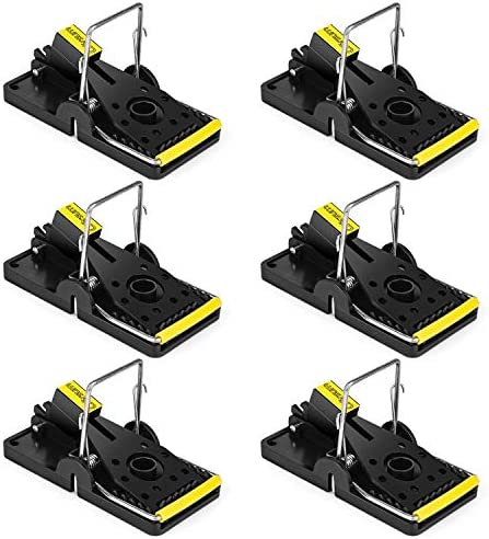 Garsum Mouse Traps Mice Trap That Work Quick Kill Captures Small Snap Trap Safe for Families product image