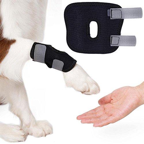 soundwinds Hundebein-Schutz für Gelenke, Schutz vor Verletzungen, Anti-Leck-Fixierung, für Hunde, Bein-Umwicklung für Vorderbeine, schützt vor Verletzungen, 2 Stück