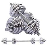 Infidev Adjustable Weights Dumbbells Set, 30kg/66lbs Adjustable Dumbbells Barbell 2 in 1 with Connector Options Convertible to Barbell, Lifting Dumbells for Body Workout Home Gym (Silver)