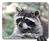 Alfombrilla de ratón para Juegos 30 * 25 * 0.3 cm Alfombrilla para ratón Mapache Animal Wild View Forest Snout Mammal único diseñado para computadora portátil