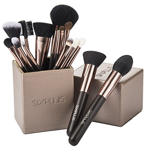SIXPLUS 15pcs Coffee Makeup Brush Set with Makeup Holder (coffee)