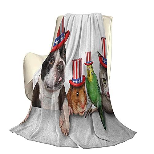 Fourth of July Morbido peluche morbido e confortevole coperta calda Simpatico animale da compagnia cane gatto uccello e criceto con cappello americano Immagine celebrazione Copripiumino aria