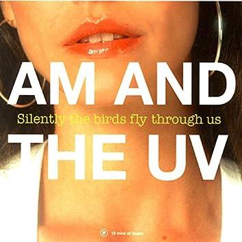 Silently the Birds Fly Through Us