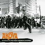 Introducing Akoya The