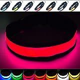 Fun Pets Collare di Sicurezza per Cani con LED Ricaricabile ultraluminoso con Grande visibilità e Maggiore Sicurezza Piccola (30cm - 40cm / 11.8' - 15.7') Rosa