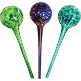 Wyndham House House System 3-Piece Globe Set,Colorful Hand-Blown Glass Plant Water, Multicolor