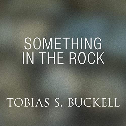 Something in the Rock cover art
