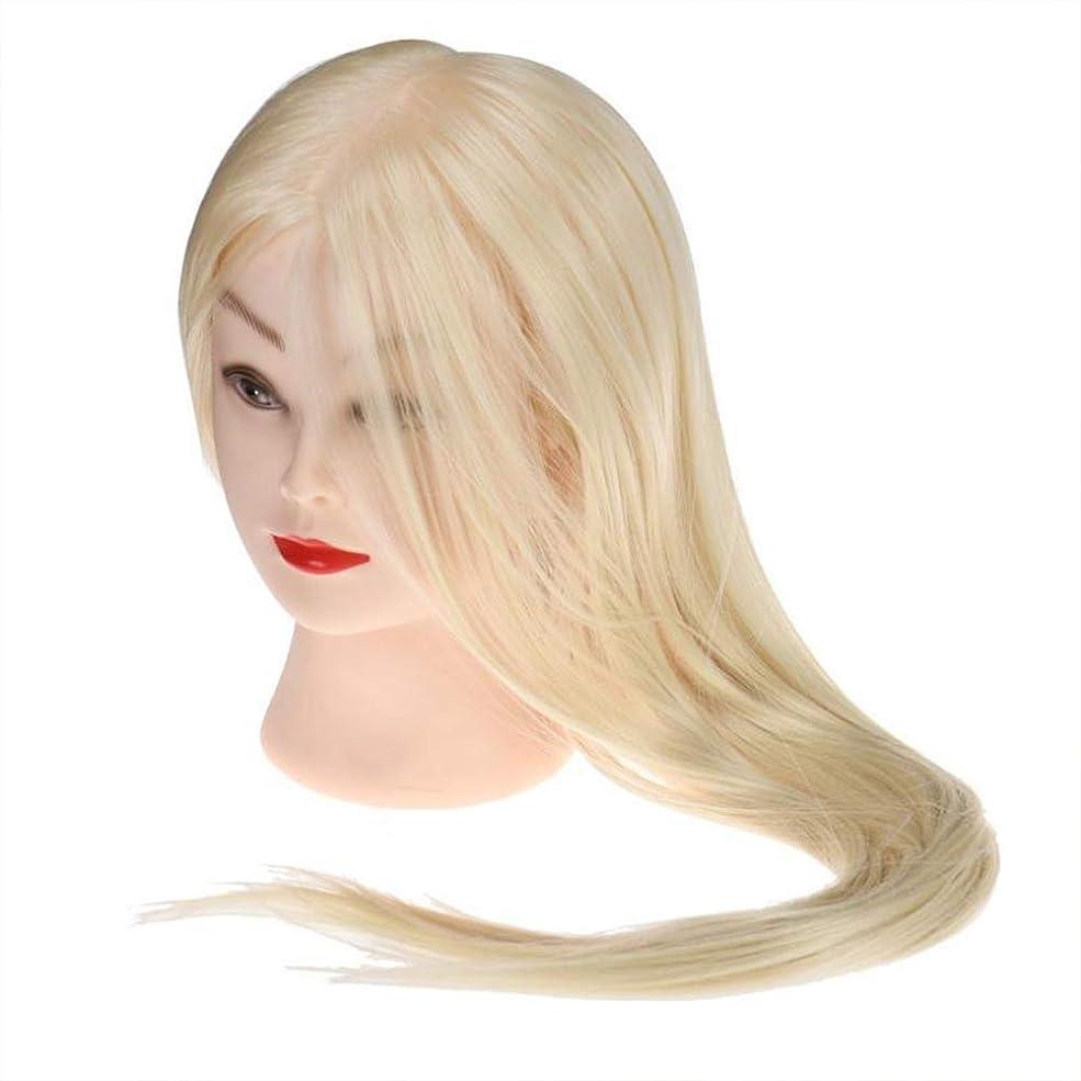 刃寛容日光サロン散髪練習ヘッドモデルメイク学校編組髪開発学習モデルヘッドヘアストレートロングかつら