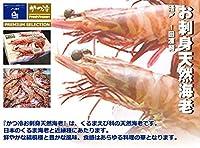 かつ冷 活〆 お刺身天然海老 1kg 30尾入 クルマエビ科 お刺身用・かつ冷オースト30尾・