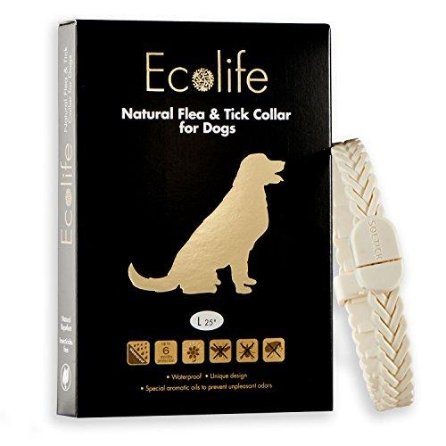 Solano SO6L02WTUS Ecolife Dog Collar