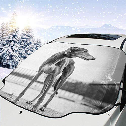 GOSMAO Protector de ParabrisasEscala de Grises Cubierta de Parabrisas Coche Protege de Rayos Antihielo y Nieve, UV, Lluvia, Funda Plegable Delantero 147 * 118cm