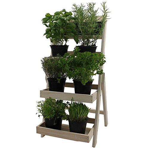 Escalera para flores de madera FSC® con pizarra para hacer anotaciones - Madera impregnada resistente a la intemperie y durable en madera natural, Color:Blanco