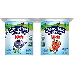 Stonyfield Organic, YoKids Blueberry and Strawberry Low Fat Yogurt, 4 oz, 6 Count
