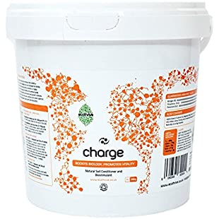 Charge, 1L / 350g