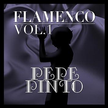 Flamenco: Pepe Pinto Vol.1