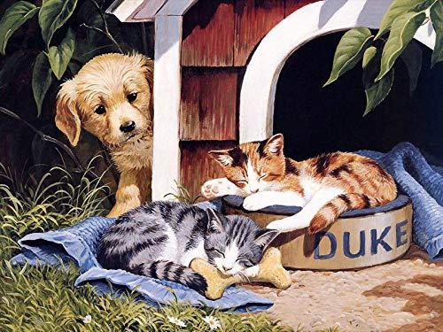 unknow Puzzel Für Erwachsene Klassische Puzzle 1000 Teile Lehrreiches Spielzeug, Katze In Der Hundehütte, DIY Collectibles Moderne Wohnkultur