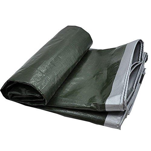 ZLININ Y-longhair - Toldo de plástico grueso impermeable para exteriores, impermeable, protección solar, aislante, lona, toldo, lona, toldo (color: verde + plata, tamaño: 4 x 8 m)
