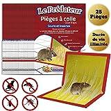 Le Prédateur - Piège à Colle pour Souris, Rat, Insecte et Lézard / 25 Plaques de Glue adhésive Extra Large, parfumée au Beurre de cacahuètes, Efficace, Non Toxique et Respecte l'environnement